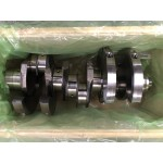 DV11 CRANKSHAFT ASSEMBLY